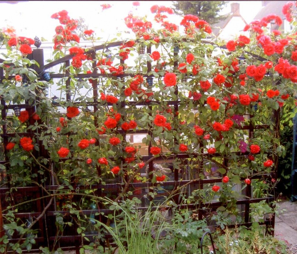 Le jardin anglais le paysagiste for Jardins anglais celebres