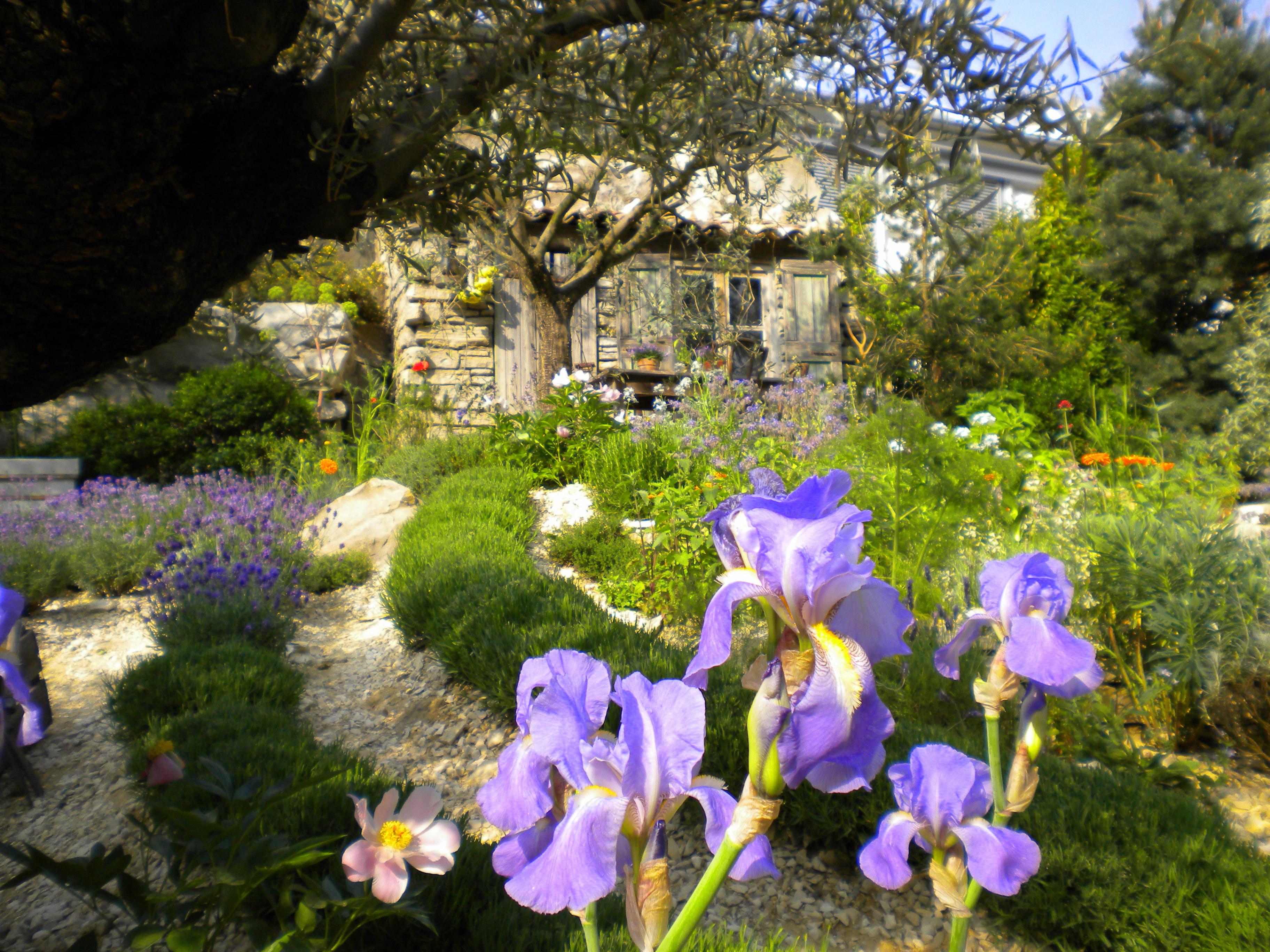 Jardin japonais le paysagiste for Paysagiste jardin japonais